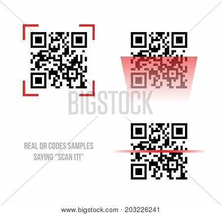 Vector illustration of Qr code samples. Scanned Qr codes reads Scan it