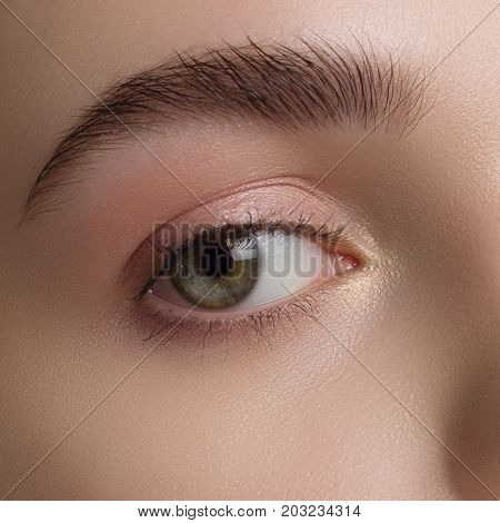 Close up view of beautiful brown female eye. Perfect trendy eyebrow. Good vision contact lenses brow bar or fashion eyebrow makeup concept