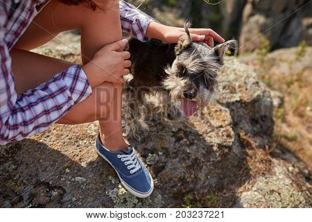 A close-up picture of a cute puppy in female hands. Young blond woman caressing her dog on a blurred natural background. A tourist trip with a dog. Nature, animals, trip concept.