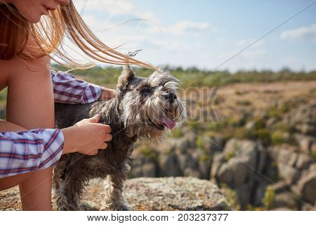 A close-up picture of a cute puppy in female hands. Young blond woman caressing her dog on a blurred natural background. A tourist trip with a dog. Nature, animals, trip concept. Copy space.