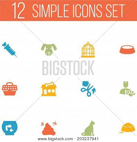 Collection Of Injection, Head, Food And Other Elements.  Set Of 12 Mammal Icons Set.