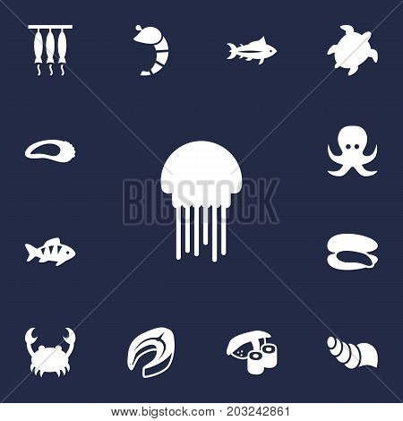 Collection Of Tunny, Clam, Sink And Other Elements.  Set Of 13 Food Icons Set.