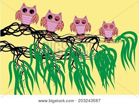 Four Pink Waking Owls With Open, Half-open And Closed Eyes On A Tree Branch With Leaves