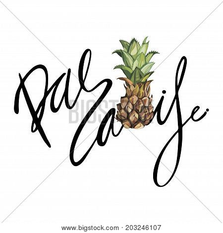 Lettering phrase - Paradise. Composition with watercolor hand drawn ananas. Background for food packaging, cards posters. isolated on white