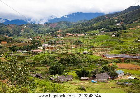 terraced green rice fields in Ma Tra village, Sa Pa, Vietnam