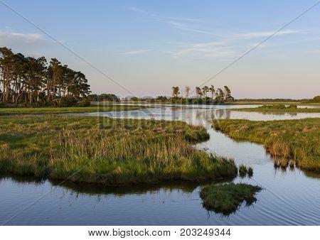 Coastal Wetlands at Sunrise in Virginia - Chincoteague National Wildlife Refuge