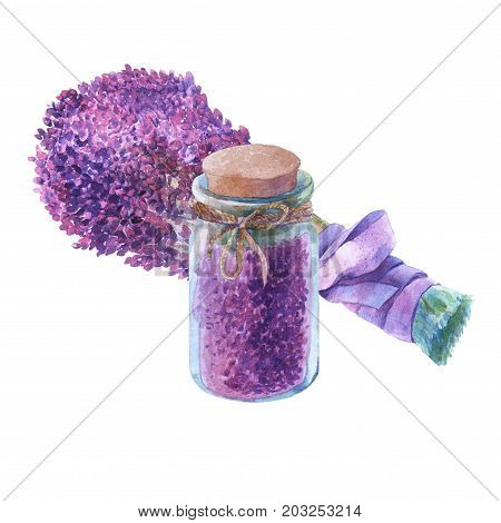 Bouquet of lavender. Dried lavender petals in a glass jar. Watercolor hand painting illustration on isolate white background.