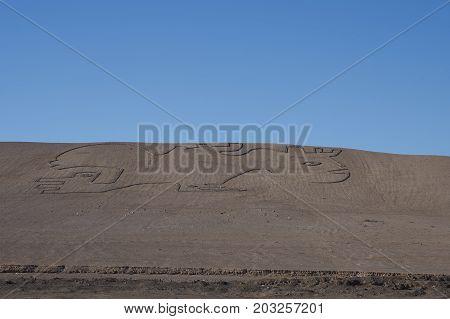 Petroglyphs, ancient form of rock art, on an arid hillside in the Atacama Desert of northern Chile near Calama.
