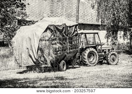 Old tractor with hay. Agricultural scene. Seasonal rural scene. Black and white photo.