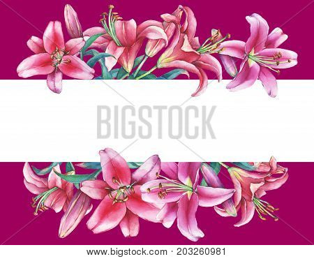 Banner with a pink lilies, isolated on burgundy background. Watercolor hand drawn painting illustration.