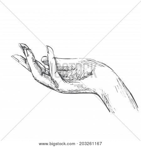 Hand open palm. Illustration in sketch style. Hand drawn vector illustrations.