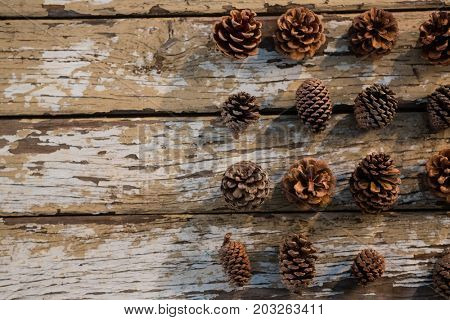 Overhead view of various pine cones arranged on wooden table