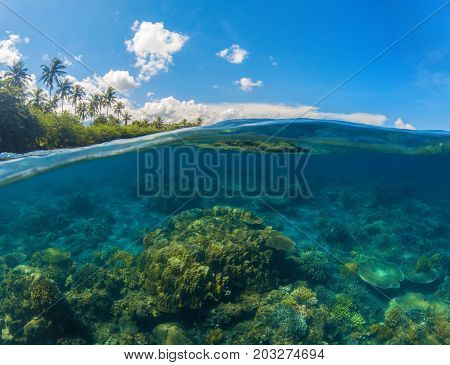 Double landscape with blue sea and sky. Seascape split photo. Double seaview. Underwater coral reef. Above and below waterline. Exotic seashore. Coral reef and green island beach. Idyllic beach day