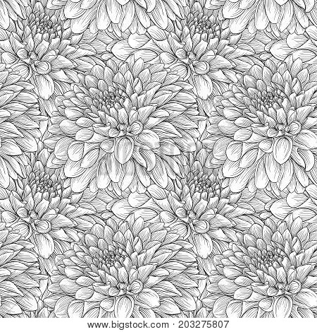 beautiful monochrome seamless background black and white dahlias Hand-drawn. Design for greeting cards and invitations of wedding birthday Valentine s Day mother s day and other seasonal holiday.