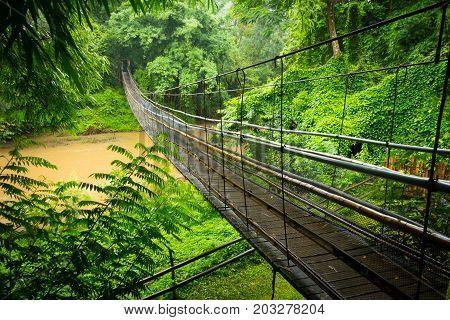 Suspension cable bridge across a river in the jungle near Chiang Mai Thailand