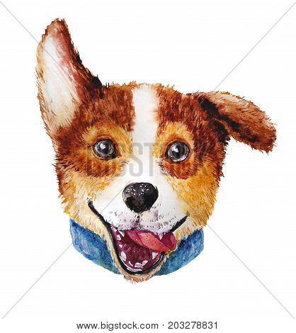 Watercolor artistic corgi dog portrait isolated on white background. Cute pet animal head hand drawn. Corgi puppy. New Year symbol christmas card xmas emblem.