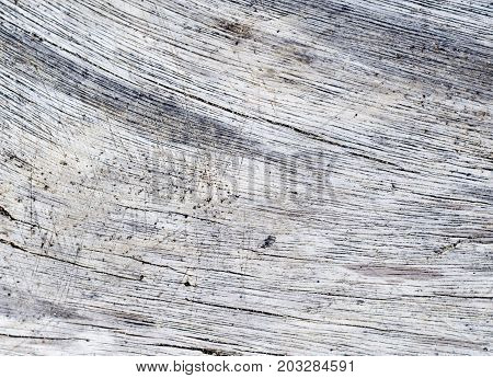 Salted sea wood texture. Gray timber board with weathered crack lines. Natural background for shabby chic design. Grey wooden floor image. Aged tree surface close-up backdrop template. Silver timber