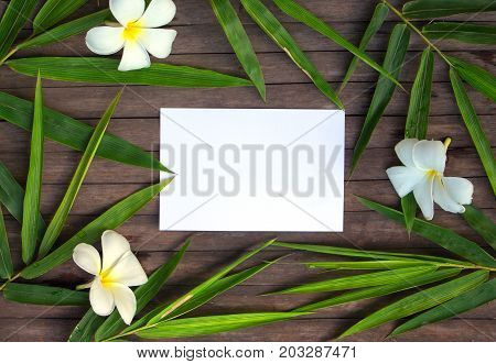 Bamboo leaf frame on rustic wooden background. Blank paper in bamboo leaf and frangipani flower. Plumeria decor flat lay. Spa or beauty banner. Exotic island vacation postcard mockup. Tropical nature