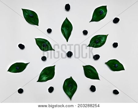 Minimalist plant background Bright green leaves blackberries and blueberries are lying on a white background Flat lay Modern minimalistic photo template