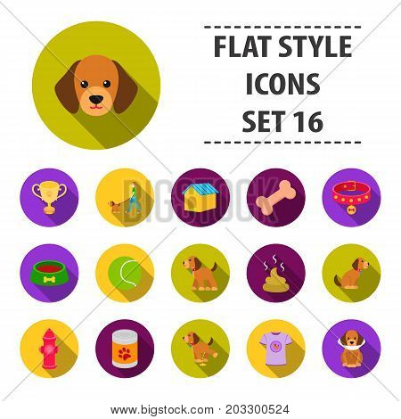 Dog equipment set icons in flat style. Big collection dog equipment vector symbol stock