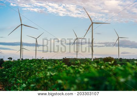 Wind Turbine Farm, Wind Energy Concept.