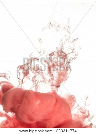 Ink swirl in water isolated on white background. The paint in the water. Soft dissemination a droplets of pink ink in water close-up. Abstract background. Soft focus, blurred backdrop.