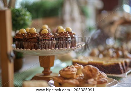 Close Up Of Chocolate Mini Cupcakes