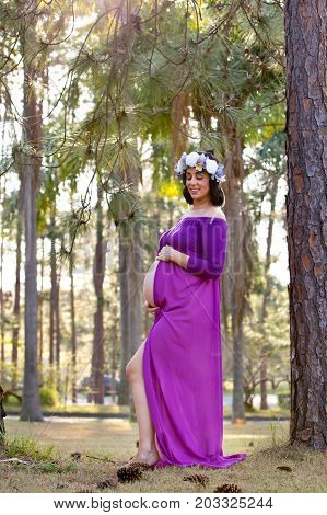Beautiful Pregnant Woman In Sheer Purple Maternity Dress Outdoors Under Trees