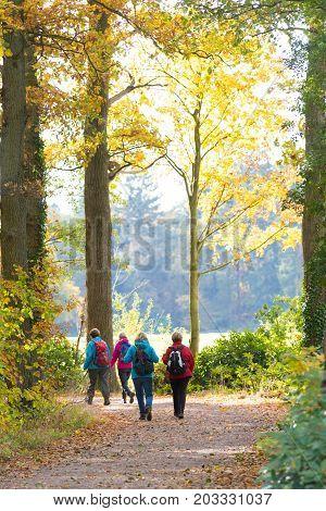 DENEKAMP NETHERLANDS - NOVEMBER 2 2016: Four unknown female hikers enjoying their walk in an autumn landscape in the netherlands