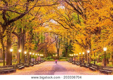 Central Park at The Mall in New York City during autumn.
