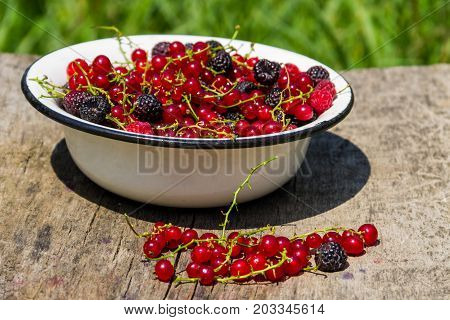 Fresh Colorful Berries In Bowl On Rustic Wooden Table