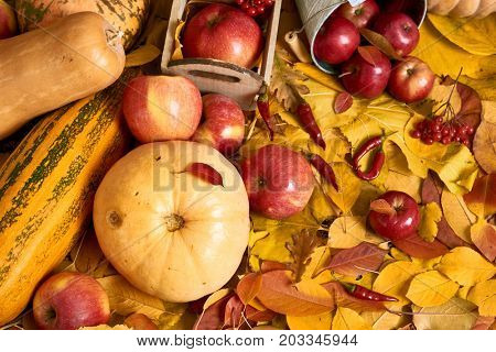 Autumn background from yellow leaves, apples, pumpkin. Fall season, eco food and harvest concept