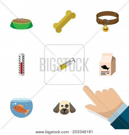 Flat Icon Animal Set Of Puppy, Hound Necklace, Osseous And Other Vector Objects