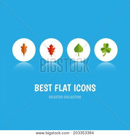 Flat Icon Foliage Set Of Leaf, Linden, Hickory And Other Vector Objects