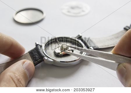 Replacing The Battery In A Wristwatch, Watch Repair