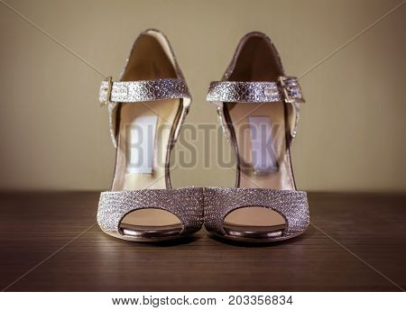 High Heel Glamour Silver Stiletto Shoes Closeup