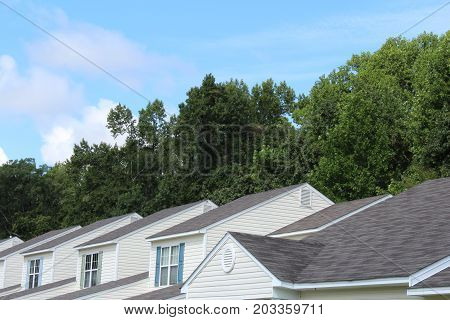 Generic rooftops backed by trees and blue sky, horizontal view