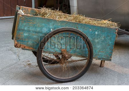 Blue Wooden Wheel Cart Full of Hay in Countryside Location