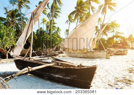 Primive wooden ethnic african boats with masts at a sandy beach, palms nearby