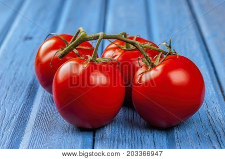 Tomatoes displayed with the vine. A close up of fresh tomatoes on a vine set on a blue table.