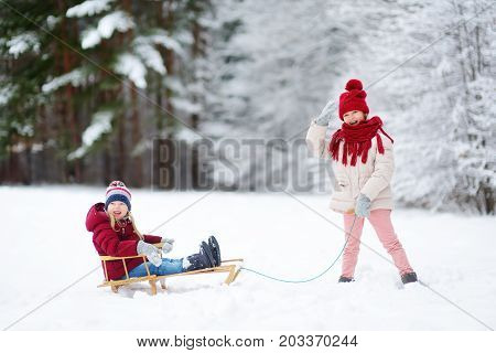 Two Funny Little Girls Having Fun With A Sleight In Beautiful Winter Park. Cute Children Playing In
