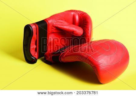 Martial Arts And Heavy Weight Sports With Red Boxing Mittens