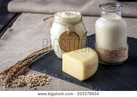 Eco Farm Products Milk, Cheese, Sour Cream, Yogurt On Dark Wooden Background. Concept Of Home Made N