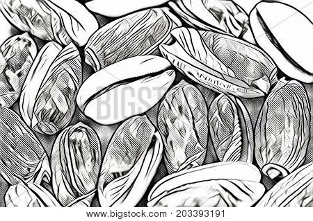 Black and white sea shells on dark background. Marine seashell background. Natural nautical decor or wallpaper.