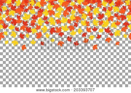 Seamless pattern with maple leafs for Thanksgiving Day celebration on transparent background. Vector Illustration. Thanksgiving background witn orange autumn leaves.