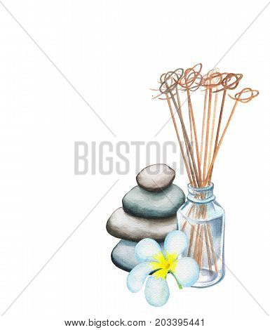 Reed diffuser frangipani flower and pebble tower watercolor drawing on white background. Spa beauty massage handdrawn illustration. Sea pebbles tower. Aromatic sticks. White plumeria. Oriental spa
