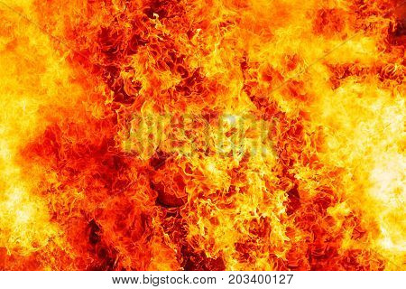 beautiful detailed structure of flames of burning bonfire