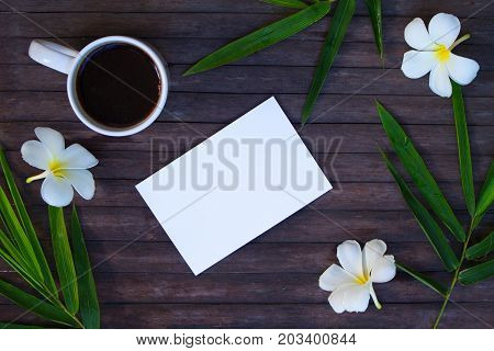White paper and green bamboo flat lay. Blank card mockup with coffee cup. Tropical travel. Exotic flat lay. White frangipani flower. Green bamboo leaf. Coffee in tropics banner. Vacation breakfast