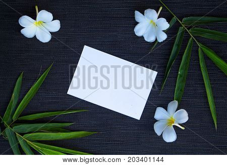 Bamboo leaf and frangipani flower on rustic wooden background. Blank note paper and floral decor top view. White card in plumeria and bamboo. Exotic vacation travel. Spa beauty banner with text place