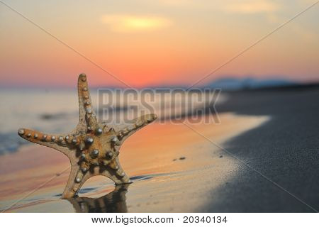 poster of summer beach sunset with star on beach representing freedom freshnes and travel concept